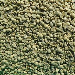 12 lbs Organic Panama Finca Kotowa Specialty Raw, Unroasted