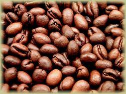 Tanzanian Kilimanjaro Peaberry Coffee, Medium Roast Whole Be