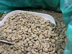 Green Coffee Beans - Brazil - Honey Process - 3LBs - Home Ro