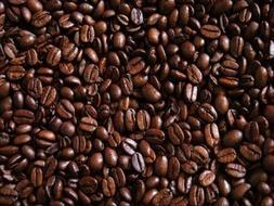 ITALIAN EXPRESSO SUPREME COFFEE BEANS - 100% Authentic Fresh