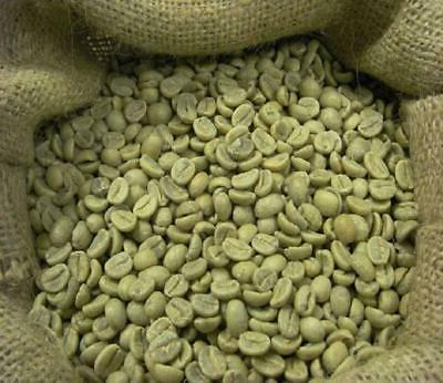 Grade Coffee Kafetos Farm