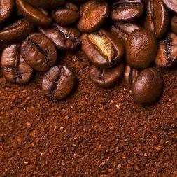 WP Decaf Trackside Blend Light Roasted Fresh Coffee Beans So